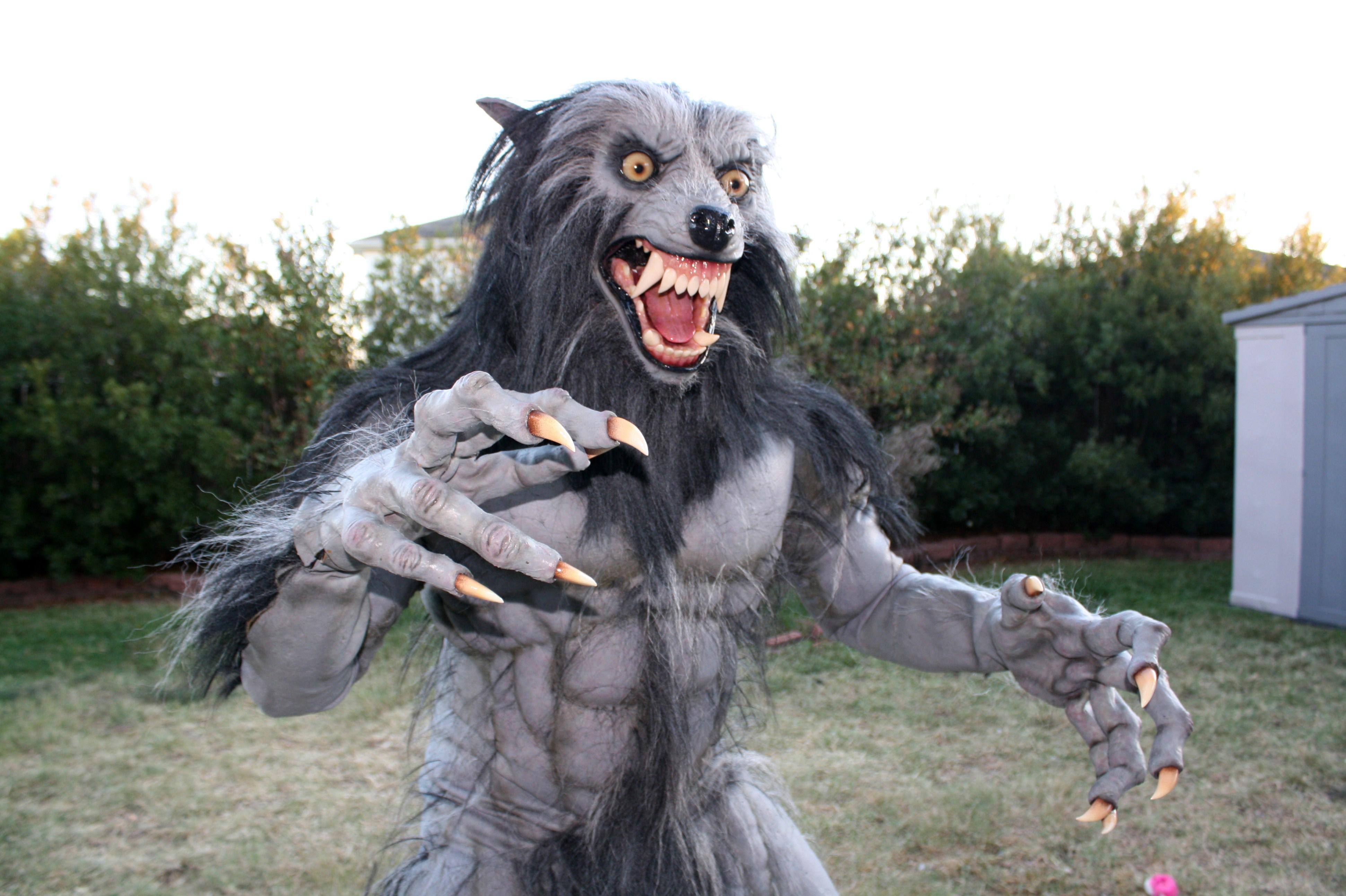 Werewolf Costume 2010