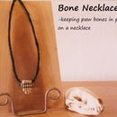 Paw Bone Necklace