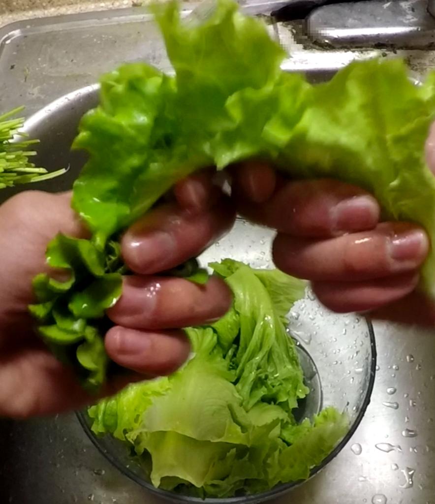Main Procedures - Prepare Lettuce