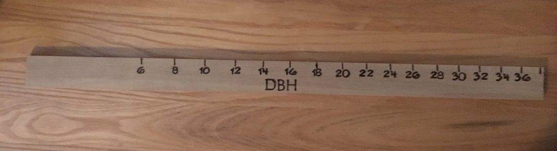 Tree Measurement: Biltmore Sticks