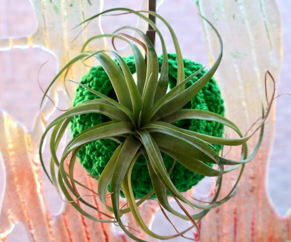 How to Crochet Air Plant Pods