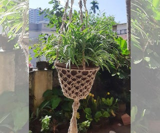 RECYCLED JUTE MACRAME PLANT HANGER