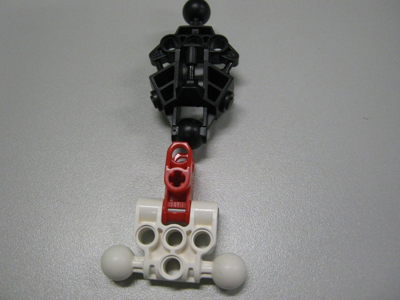 Assemble- the Skeleton