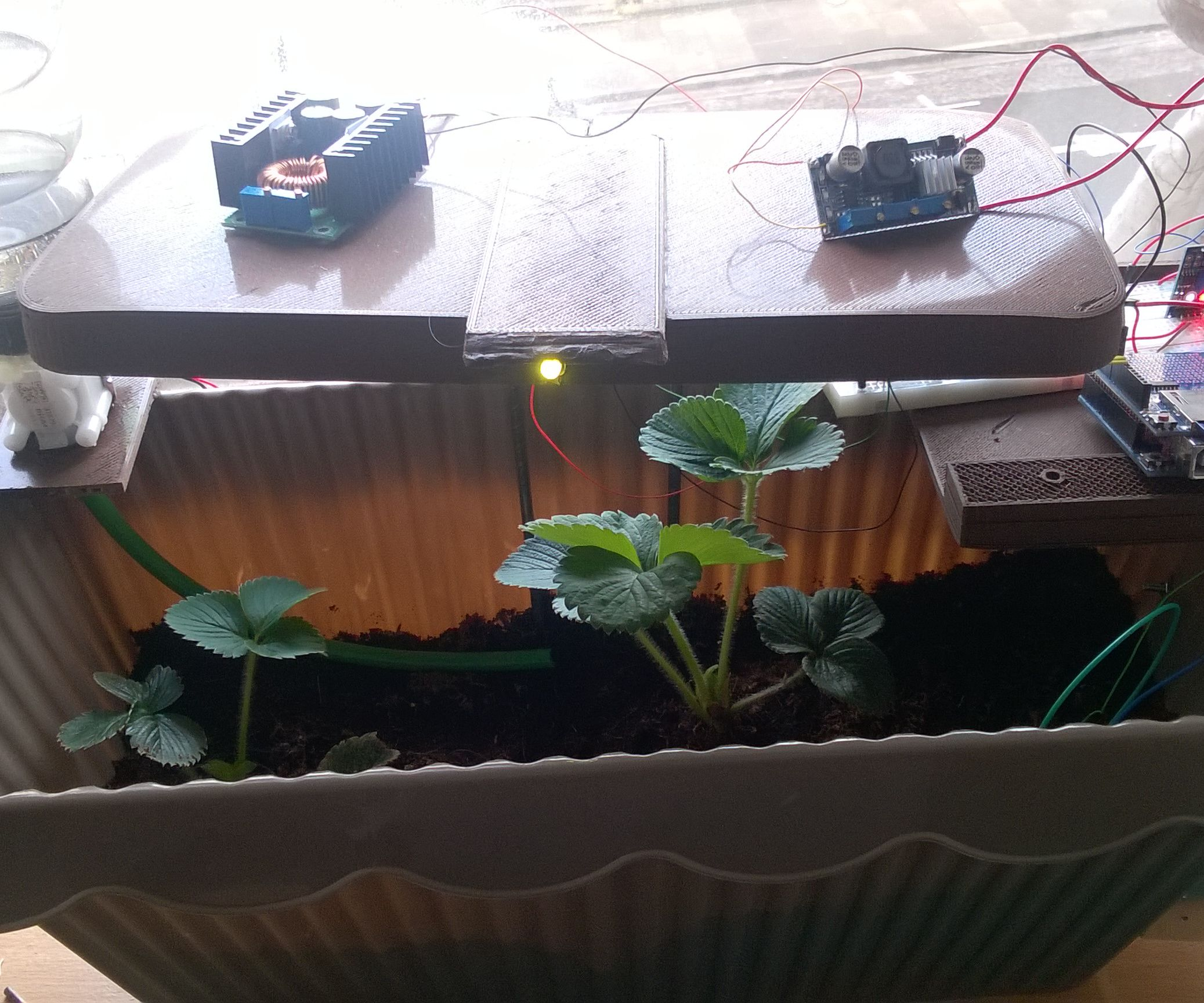 Automated Plants Watering and Lighting System