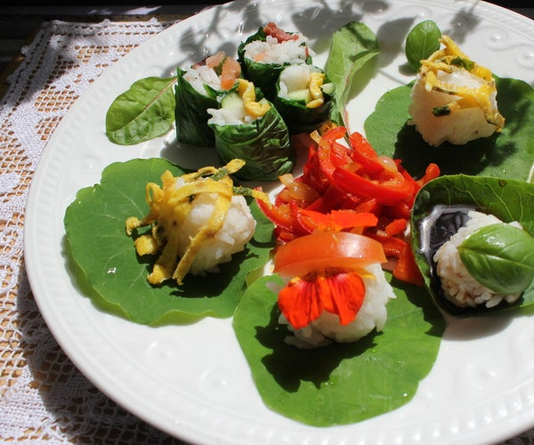 Organic Seaweedless Sushi - Growing Your Own Sushi Wraps From Edible, Easy-to-cultivate Leaves.
