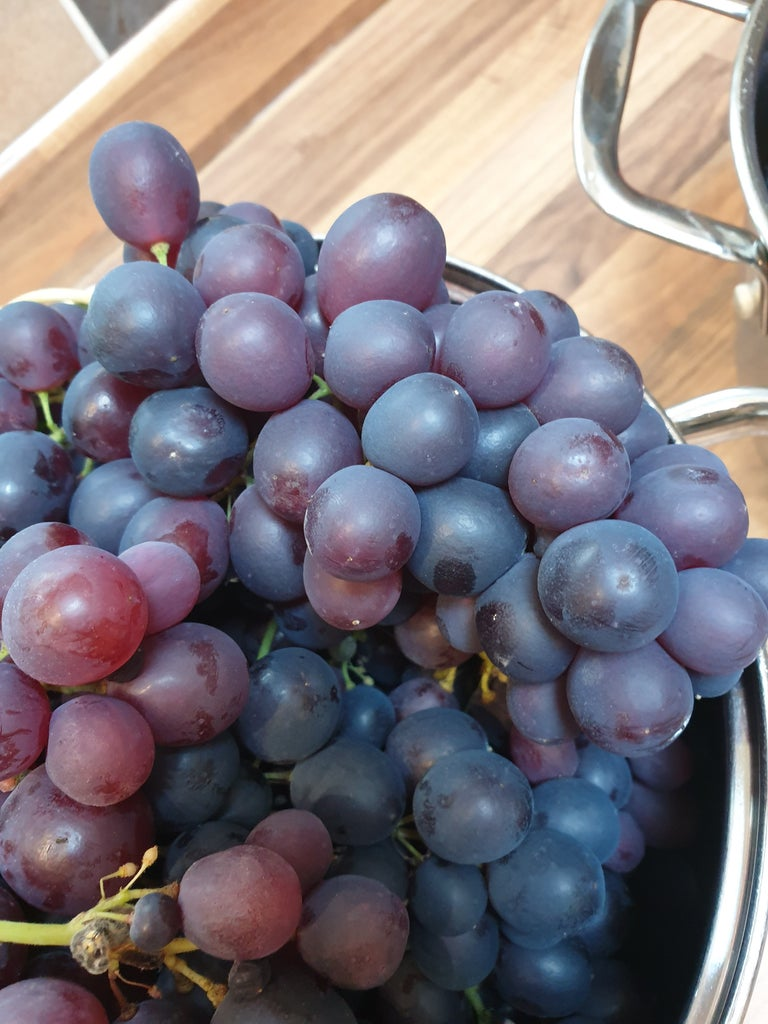 How to Tell When the Grapes Are Ready to Make Wine