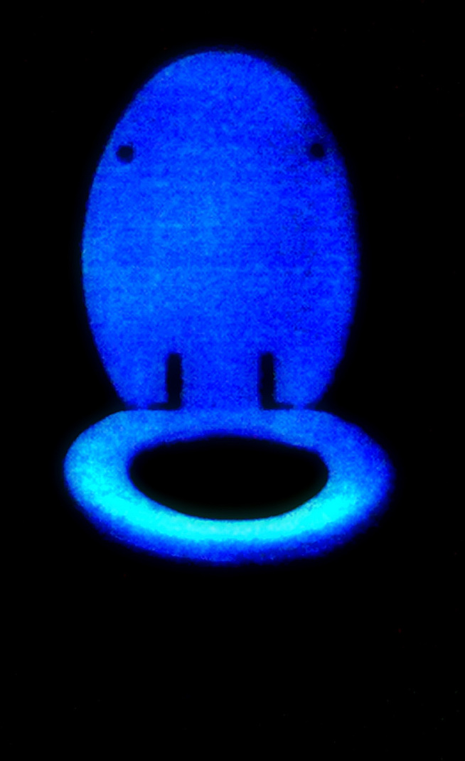 Glow in the Dark Commode Seat