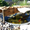 Pond Shade from Salvaged Materials