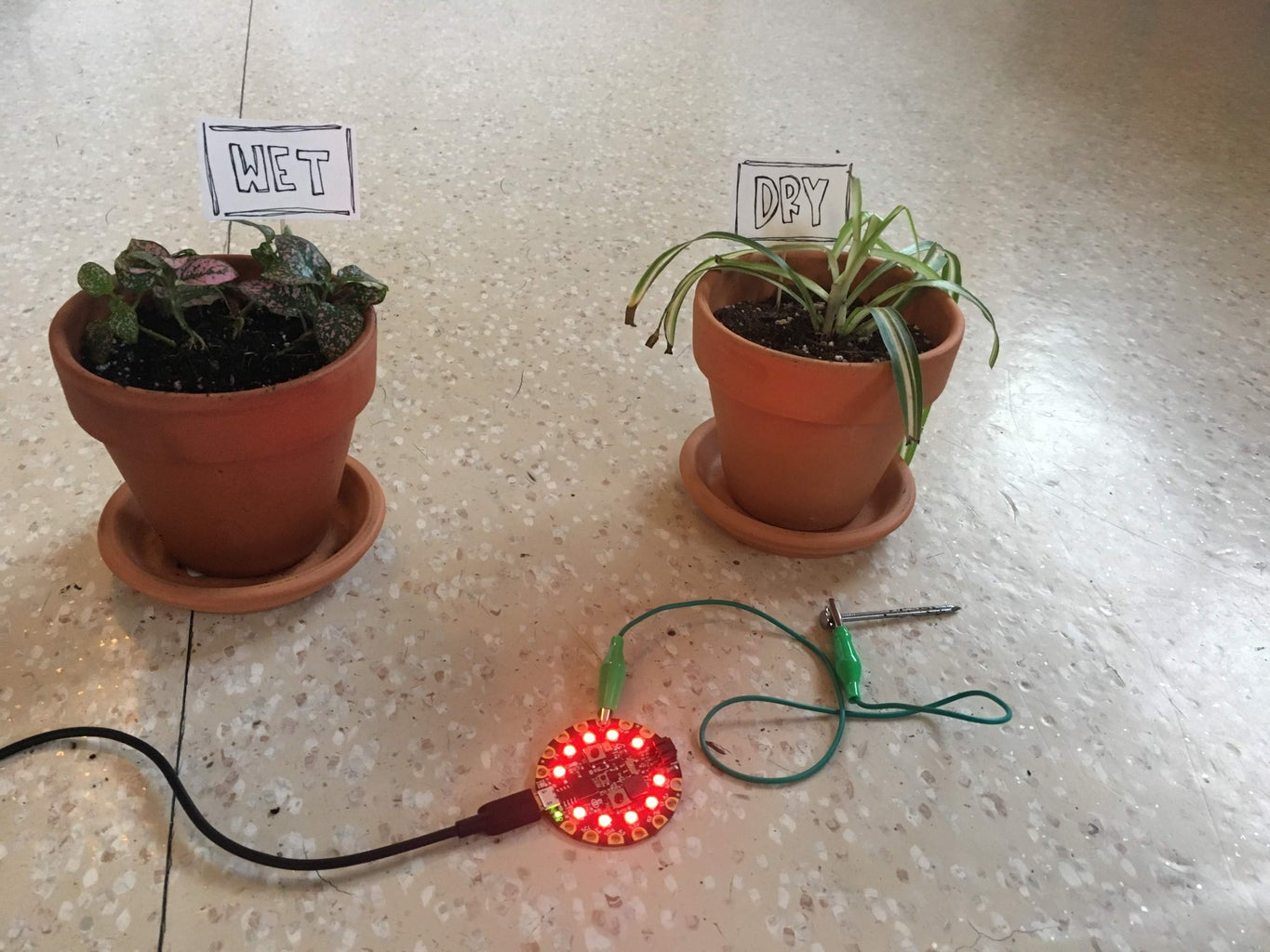 Testing the Soil Sensor and Setting the Dry and Wet Values