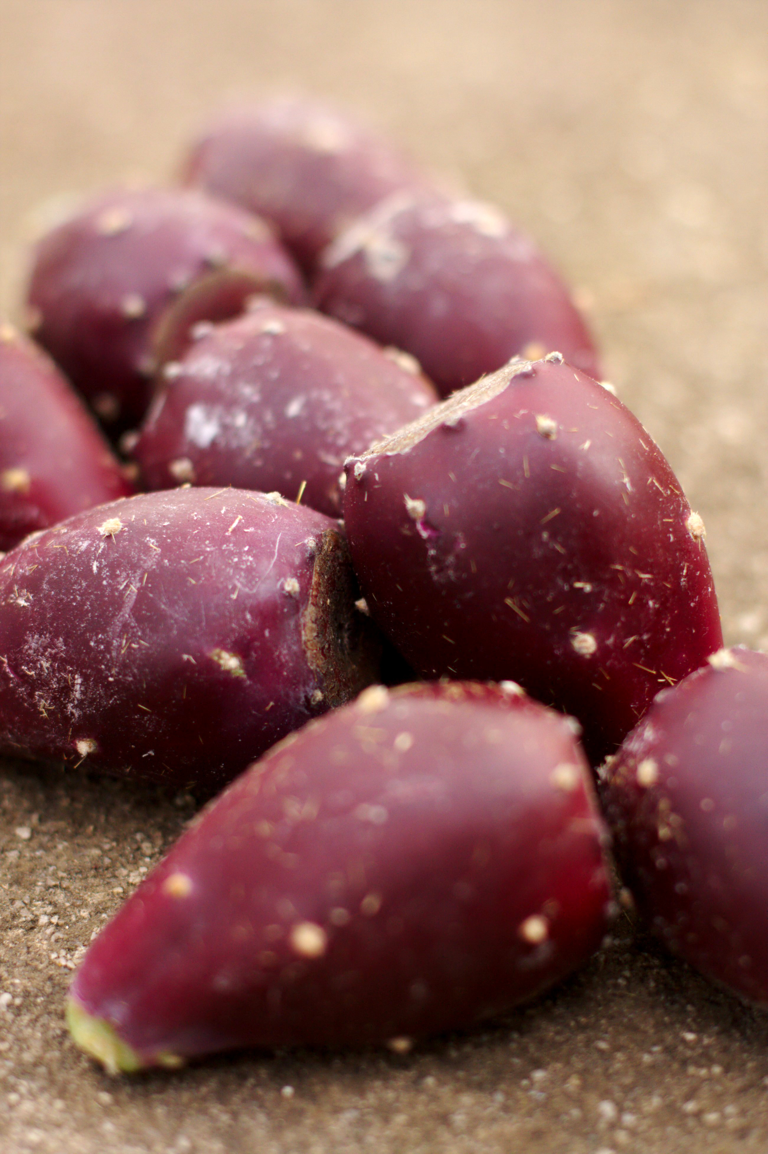 How to Prepare Prickly Pear