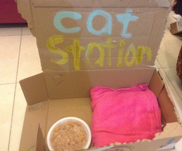 Cat Station