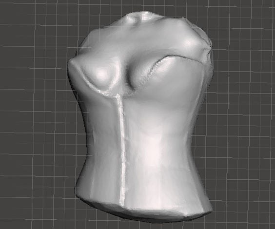3D Scan the Body for Custom Clothing Fashion Pattern Making, Sculptures, 3D Printed Replicas, CAD Modeling, Portrait Busts & More