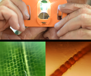 The $1 Pocket Microscope - Explore the World Around You at 80x and 140x!