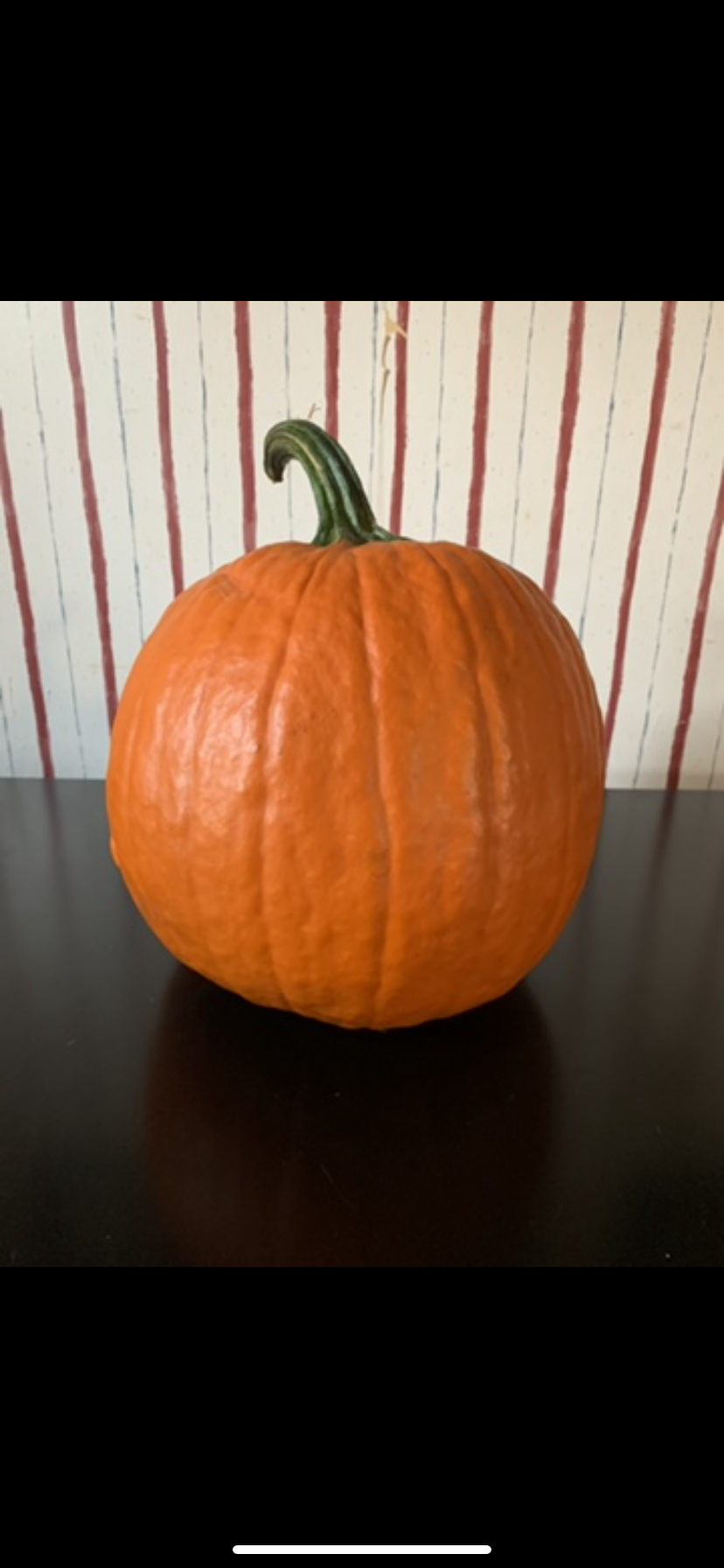 The Pumpkin Globe