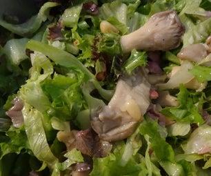 牡蛎蘑菇沙拉