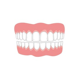 The Effect of Milk, Vinegar, and Cola on the Enamel of Human Teeth