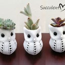 Adorable 3D Printing Owl Succulent Pot
