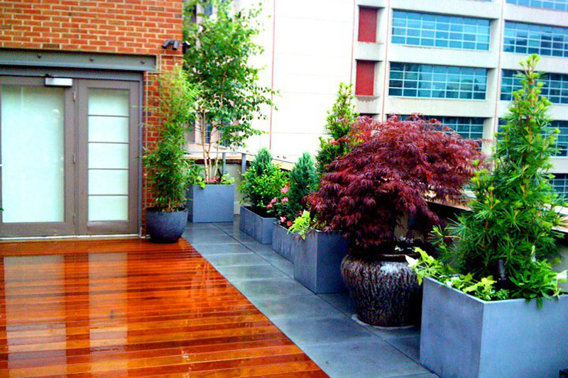NYC Landscape Design - Rooftop Garden How-to