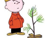 A Traditional Christmas Tree Stand in 3 Easy Steps--Charlie Brown Style