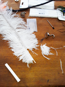 Trim the Feather