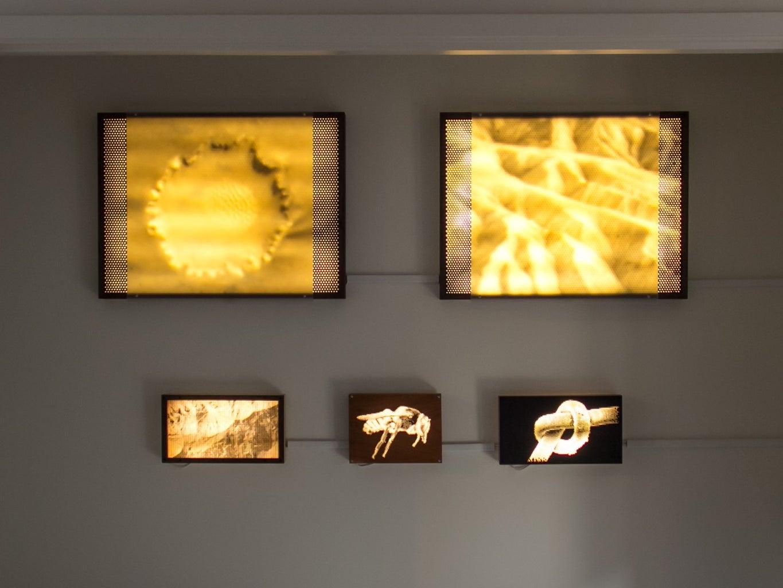 Scale/Scape: Halftone Light Panel Series