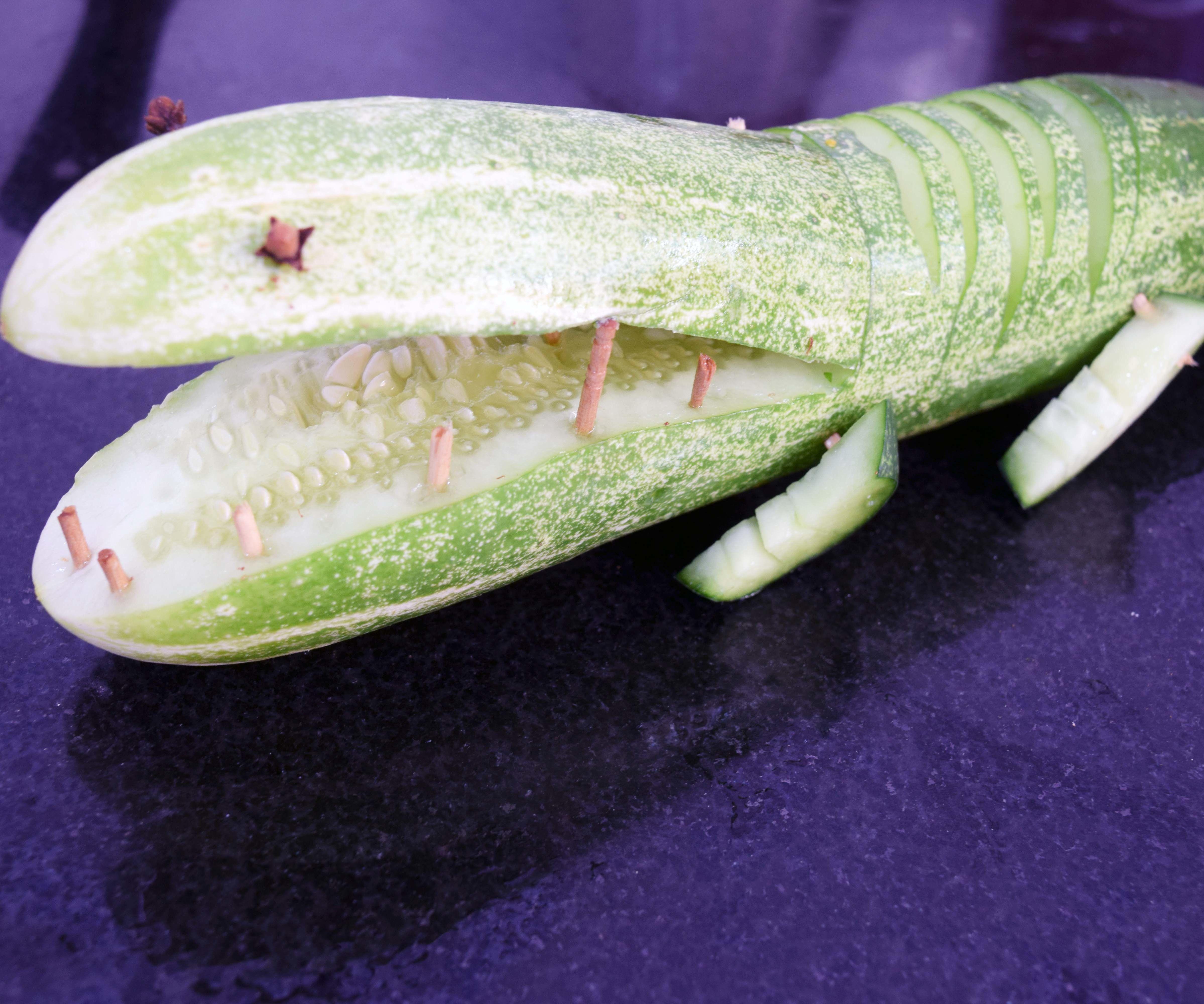 Cucumber Crocodile