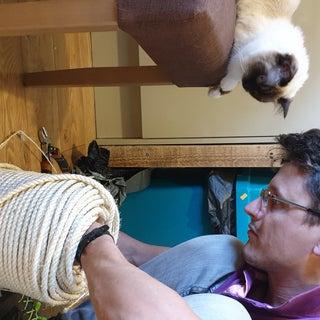 Full Size Cat Scratching / Climbing Post