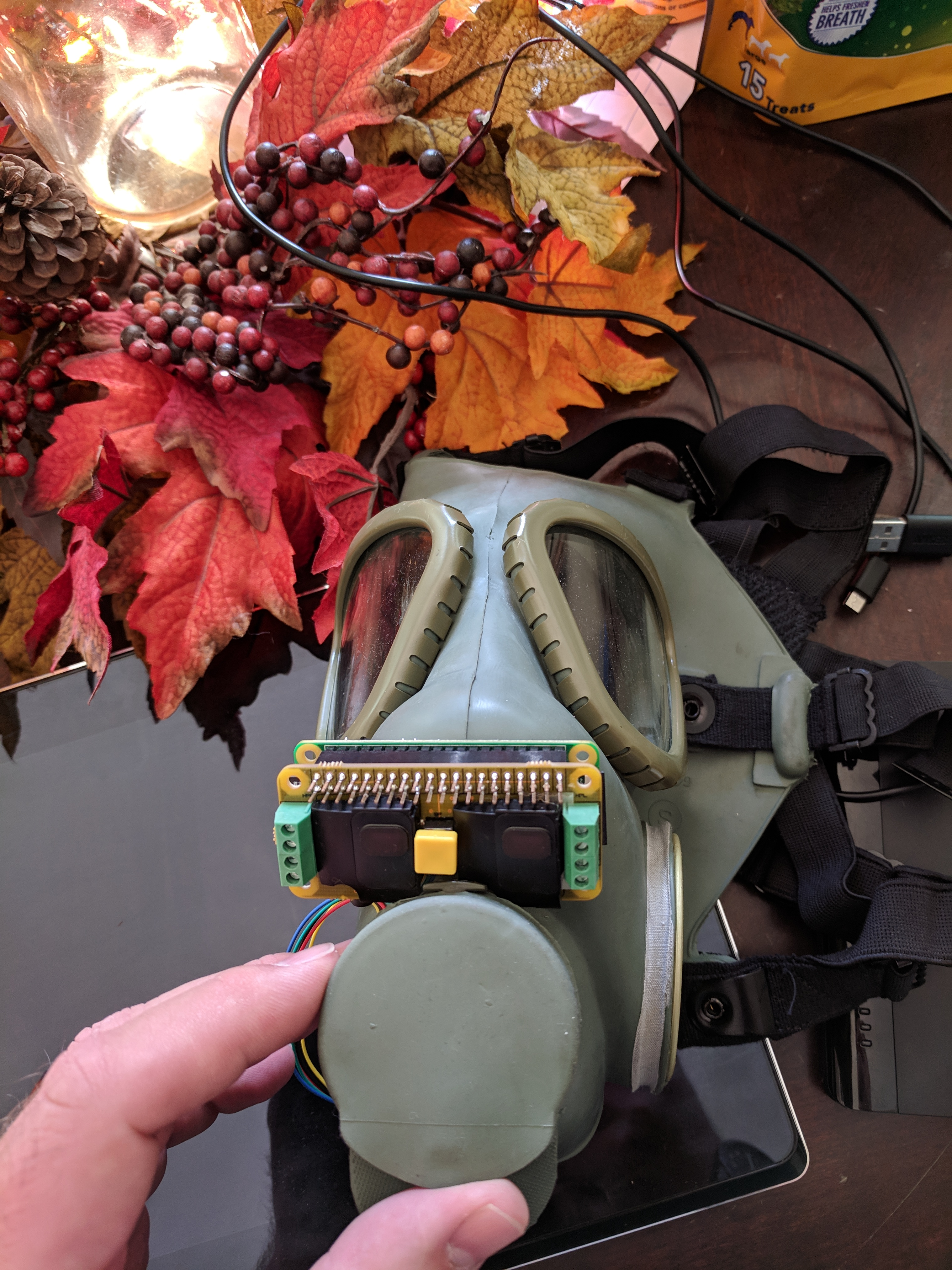 Halloween Voice Changer With Raspberry Pi