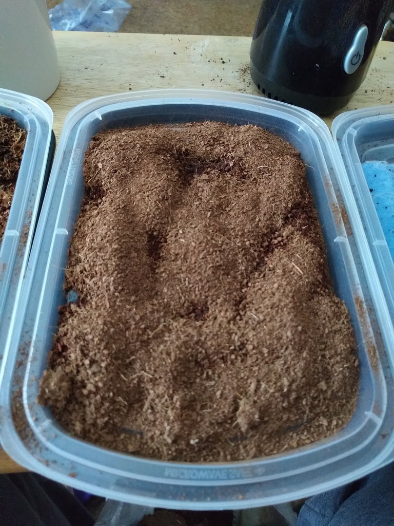 Plant Growth Medium