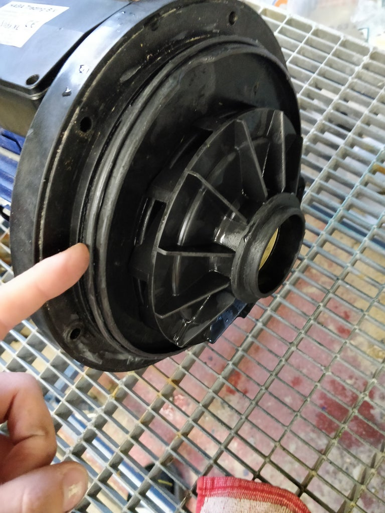 Remove the Pump Housing O-ring and Impeller Shroud