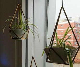 几何植物衣架