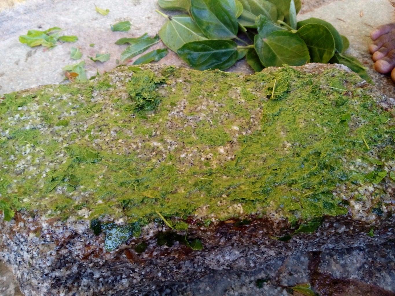 Grind Hibiscus Leaves