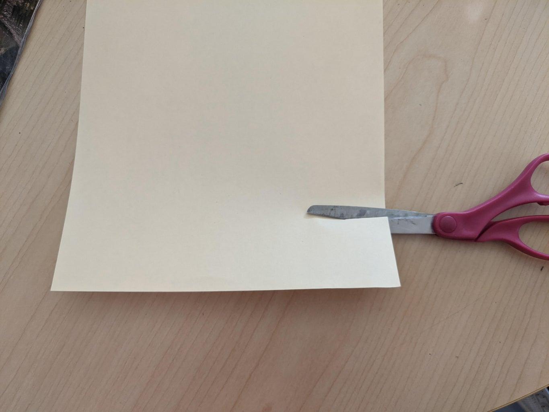Cut a Strip of Printer Paper.