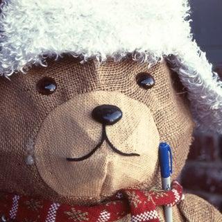 mr. bear d23.jpg