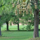 Humming Bird Feeders With Class