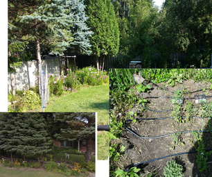 Setting Up an Automatic Multi-zone Home Irrigation System