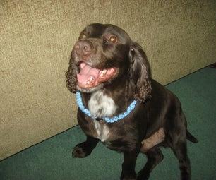 Chainlink Braid Paracord Dog Collar