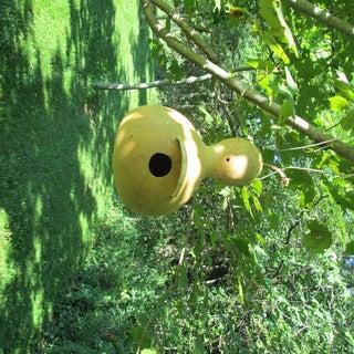Making Gourd Birdhouses