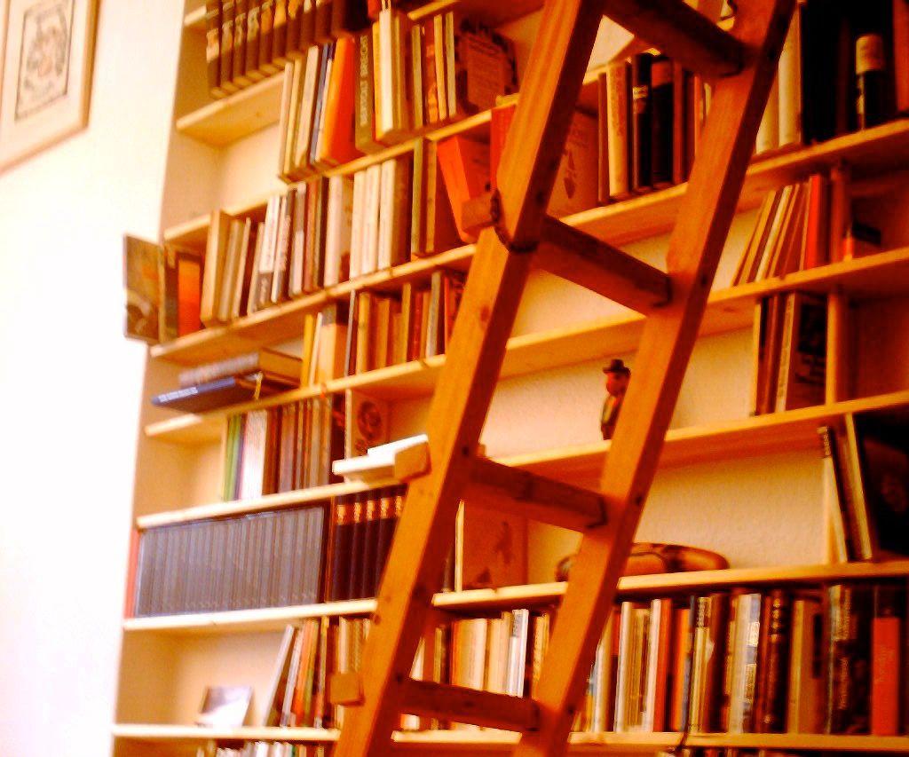 Svelte Bookshelf - the Intention
