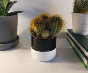 植物锅为您的室内植物