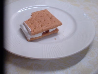 How to Make a Perfect S'more