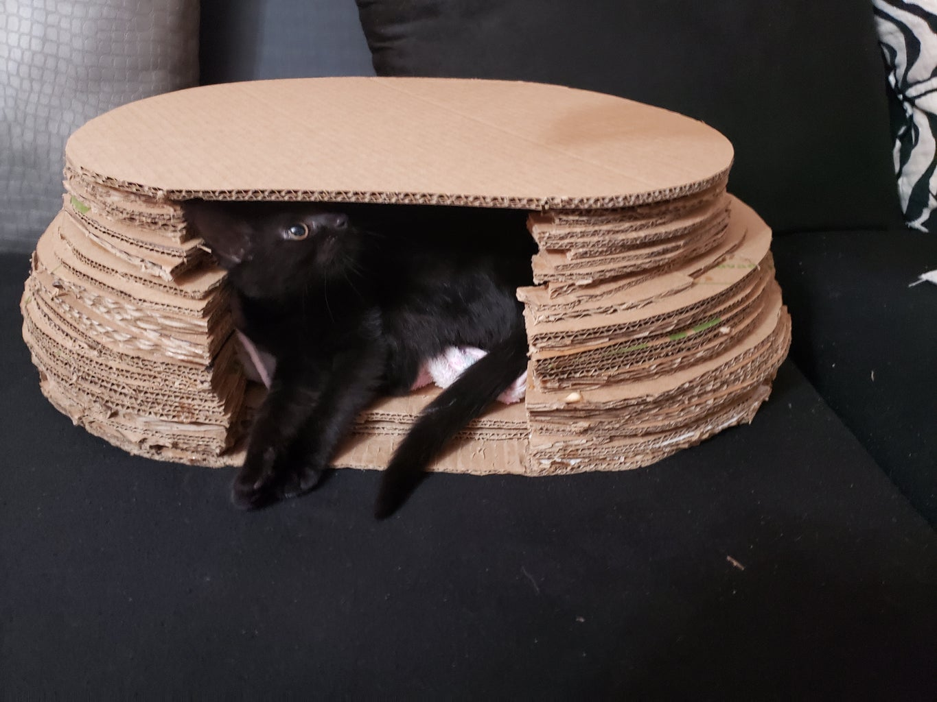 How to Make Cardboard Cave for Your Cat