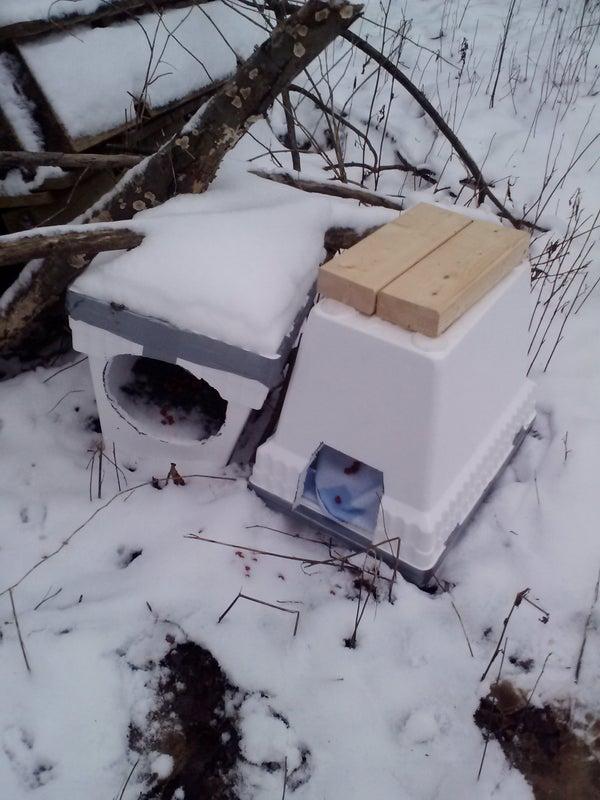 Easy Winter Cat Shelter