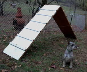 Dog Agility a Frame
