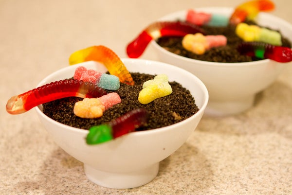 Dirt Cake With Gummy Worms!