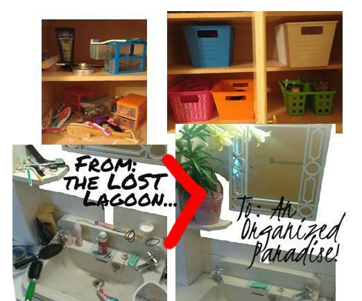 Organize Your Bathroom Quick & Cheap!