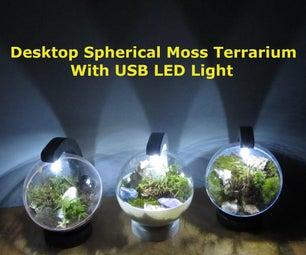 Desktop Spherical Moss Terrarium