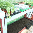 Raised Salad Bed