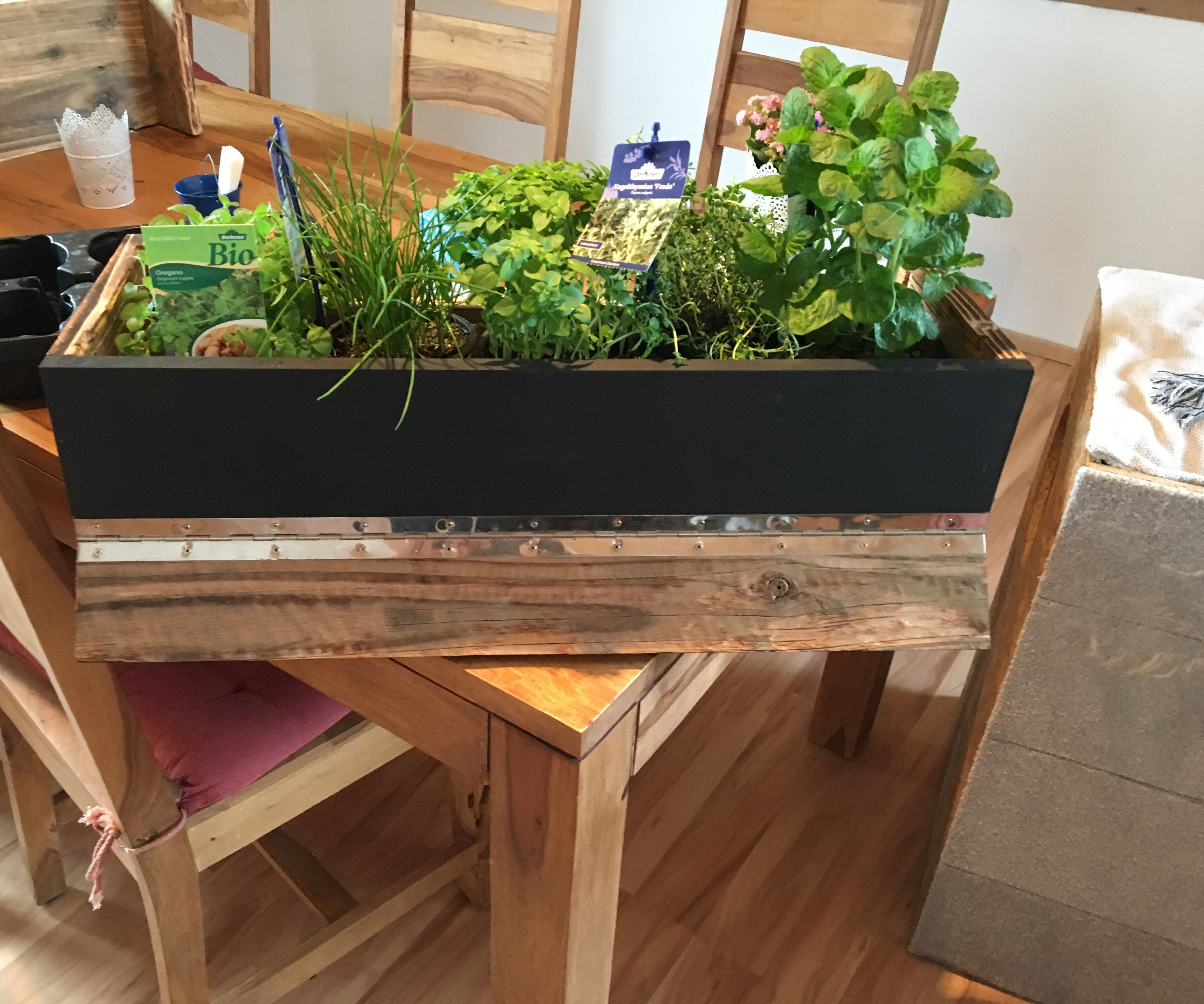 """Wall Garden and """"shelf of Shame"""" Out of Old Wood"""