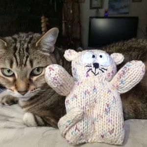 A Little Kitty Cat